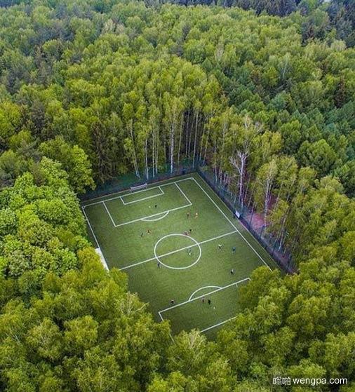 丛林深处的足球场
