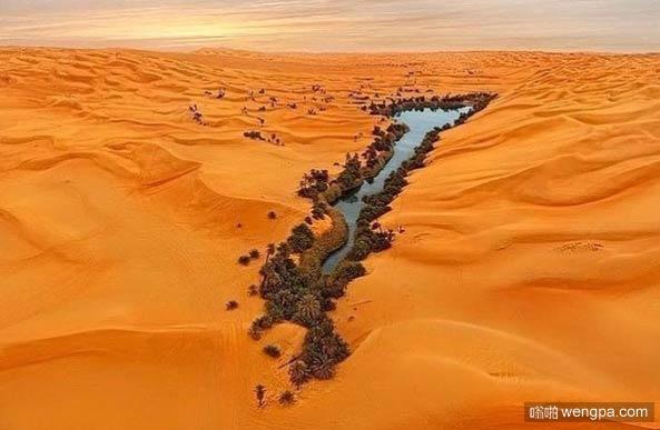 利比亚沙漠绿洲