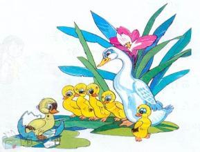 【内涵段子】鸭妈妈看着丑小鸭越长越漂亮,心里忐忑不安