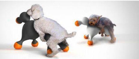 狗狗专用充气娃娃 泰迪有的玩了