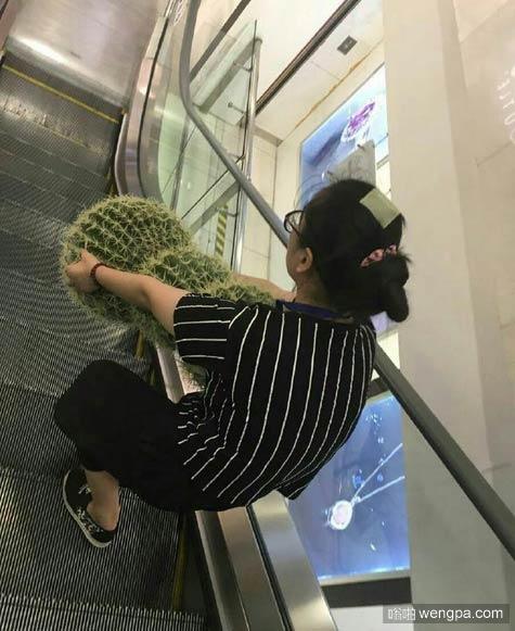 坐电梯看到一大姐搬仙人掌 不知道这样是手比较疼还是胸比较疼