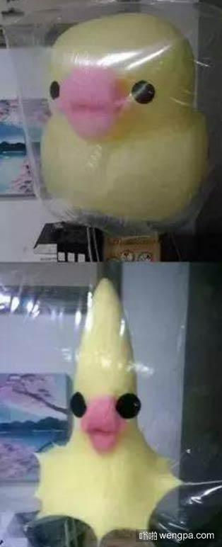 买了个棉花糖没舍得吃,第二天一看…