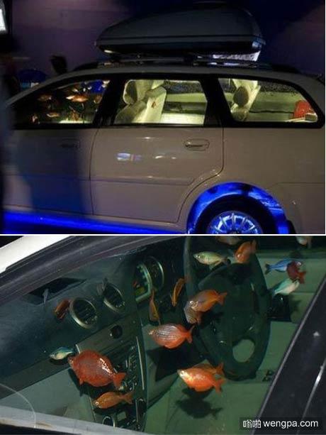 汽车鱼缸:泰国一辆汽车里面游着很多漂亮的金鱼引围观