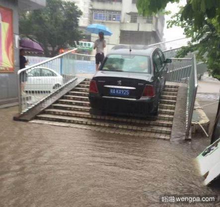 连夜暴雨水位快速上涨 司机做了艰难而正确的决定 - 嗡啪网