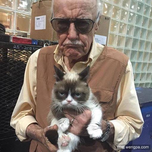 猫cosplay主人的表情 猫模仿主人搞笑图片 - 嗡啪网