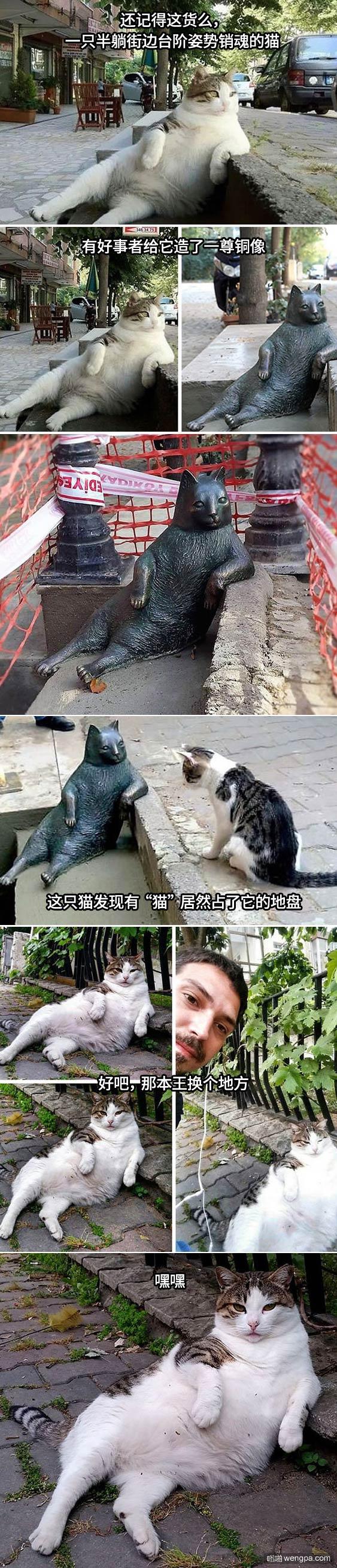 街边姿势销魂的猫猫有人给它铸了一尊铜像