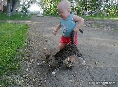 小孩和猫萌宠图片 小孩和猫可爱图片 - 嗡啪网