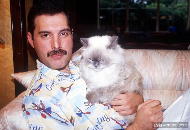色情明星和他的猫Tiffany 表情亮了 猫猫萌宠图片 - 嗡啪网