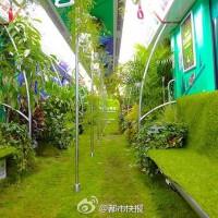 开往春天的地铁 杭州地铁一号线成了奇幻森林