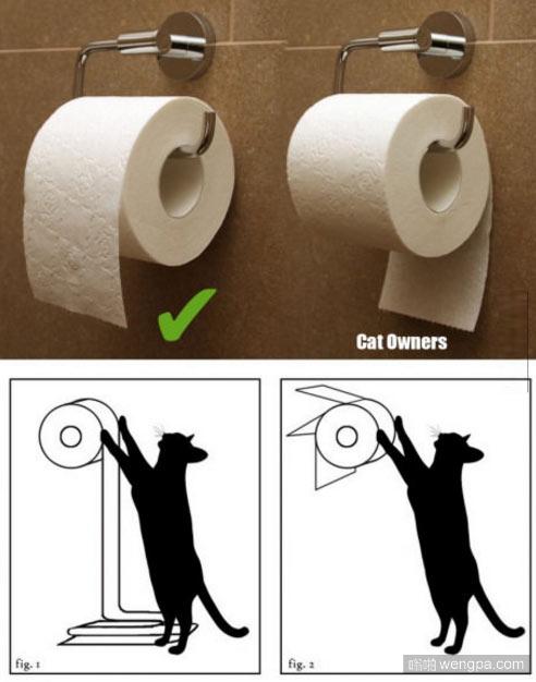 家里有猫的厕纸应该这么放