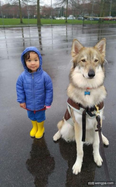 我侄女儿和她的狗 萌宠图片 - 嗡啪网