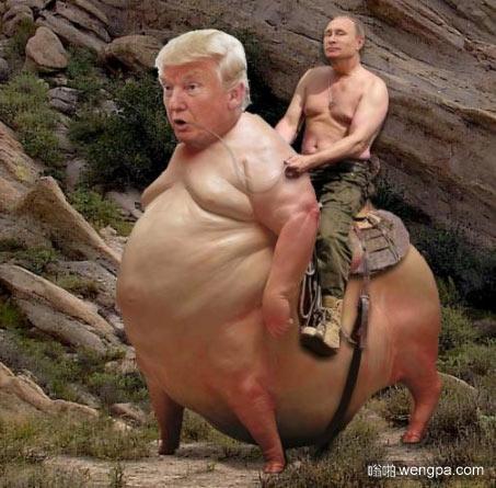 ps恶搞普京特兰普 普京骑着特兰普搞笑图片 - 嗡啪网
