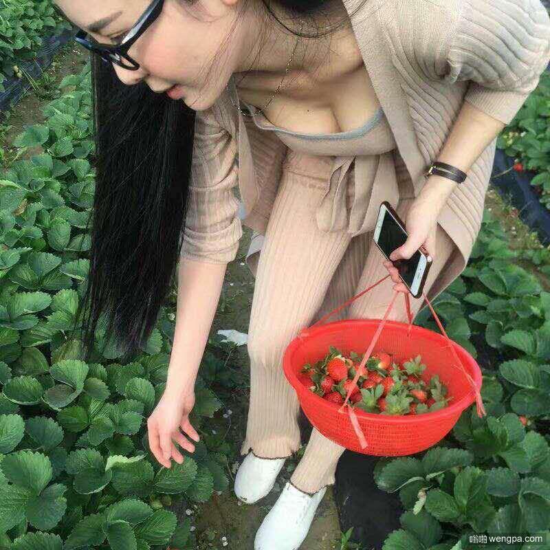 元旦跟妹子去大棚摘草莓 好凶的美女 - 嗡啪网