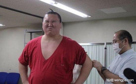 反差萌!日本相扑选手居然怕打针 