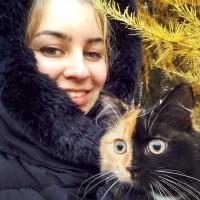 一只叫Elizabeth的可爱猫咪 有两副面孔呢~~~萌翻了!(1)