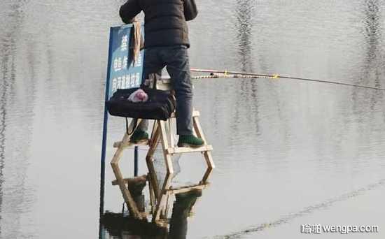 男子用人字梯当高跷在河中央钓鱼,身边一块牌子写着禁止标语