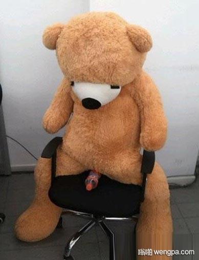 大熊被邪恶的人们玩坏了