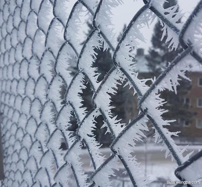 这就是所谓的霜