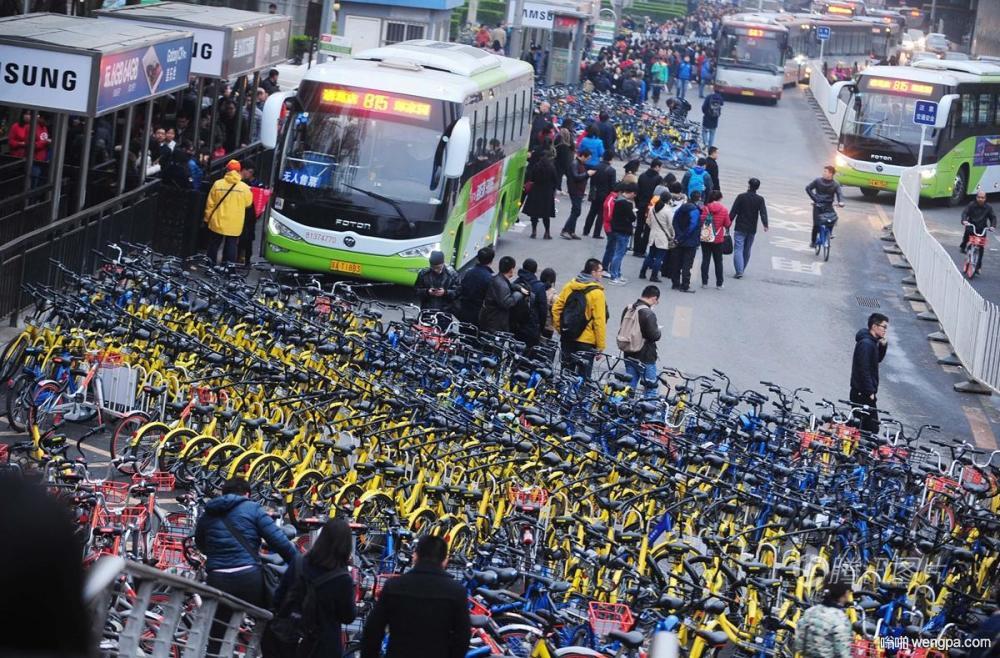 """位于大望桥东侧的公交车站被上千辆共享单车""""围困"""" 进出站困难"""