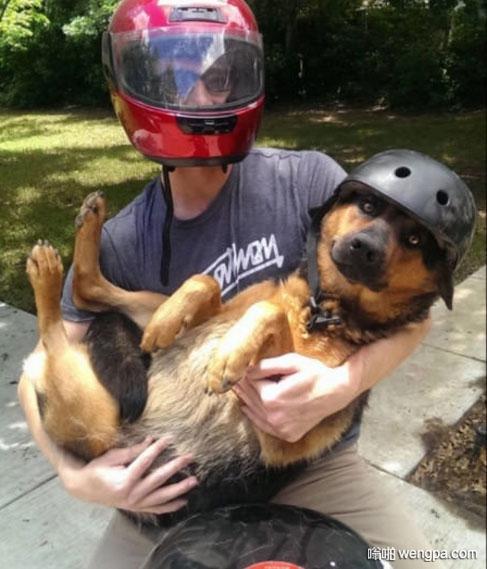 带妹妹的狗狗出去兜风 显然狗狗对于自己的安全问题有点不太放心