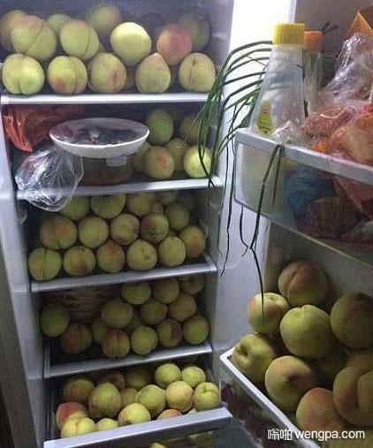 今年桃子大丰收 冰箱里装满了桃子 - 嗡啪网