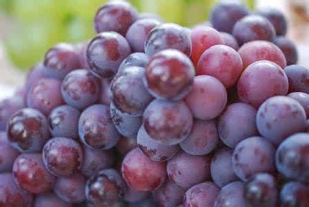 【笑话】2011年我去凤凰古城旅行 我想买葡萄