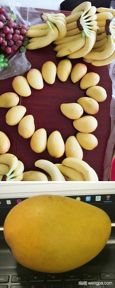 女同事在公司群里发了张水果的照片,男同事:天,发张水果的照片也要美颜…