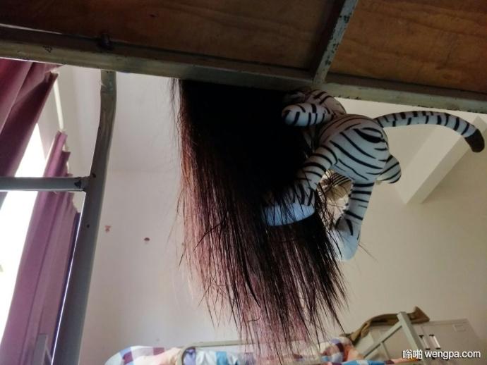 原来女生宿舍晾头发是这么恐怖的一件事情… (5p)
