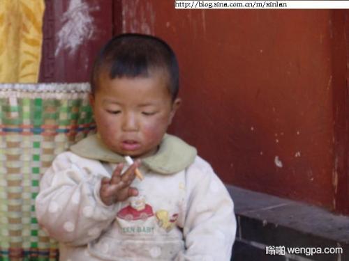 【搞笑段子】本人4岁喂猪,5岁放牛,6岁读书,7岁精通长牌