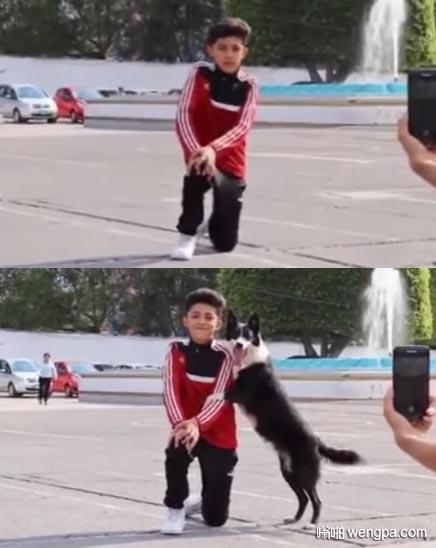 小主人拍照 狗狗懂事的主动上去合了个影