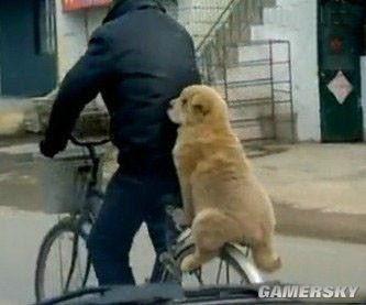 【搞笑段子】小时候,发烧到40度,我爸骑自行车送我去医院