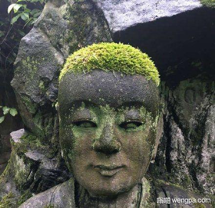 【搞笑图片】大自然送给佛祖一领绿帽子