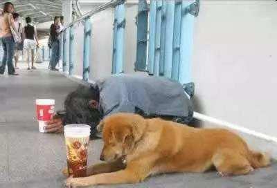 在马路上碰到一个乞丐,竟然在用价值6000多的手机