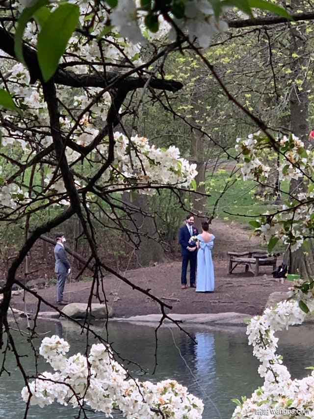 参加了纽约中央公园的婚礼