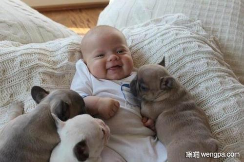 【笑话段子】小棉袄两三岁,喜欢小动物
