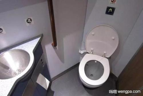 【笑话】今天早上赶动车,厕所都没来得及上,然后在动车上上厕所