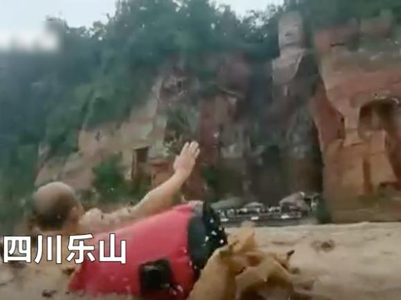 乐山大叔们组团在洪水中游泳,向乐山大佛方向游人打招呼(视频截图)