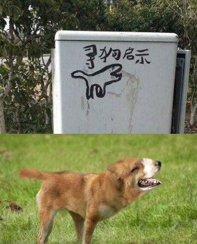 寻狗启示里的那条狗找到了,经鉴定确实是画上的神犬无误