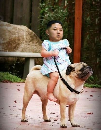ps恶搞国家领袖金正恩搞笑头像图片