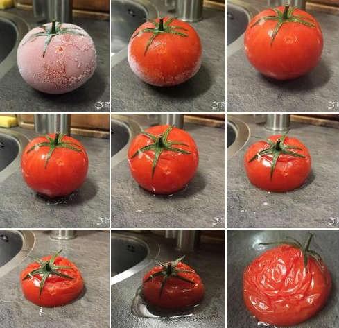 从冰箱里拿出来后,差不多是个废茄了