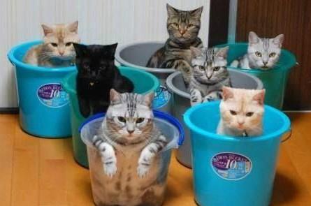 听说这个澡堂你要收保护费?